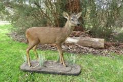 fullmount-deersml